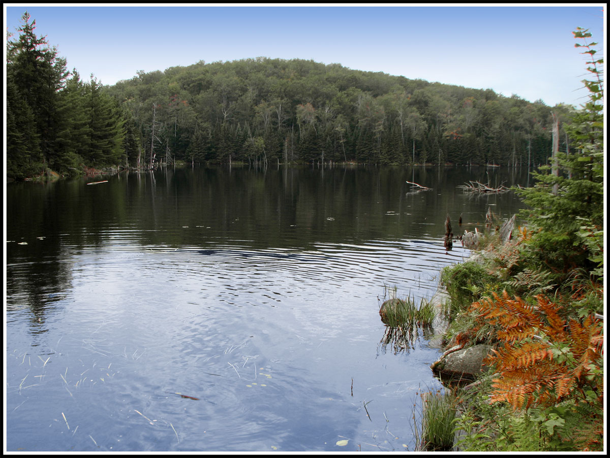 Lago en otoño, Canadá.