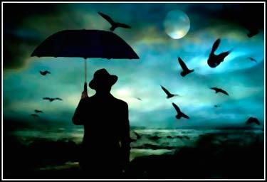 Paraguas y pájaros